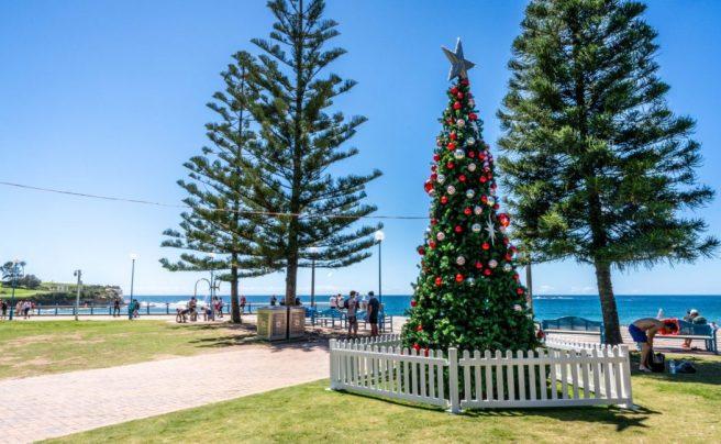 Coogee-Beach-Christmas-Tree-Sydney.jpg